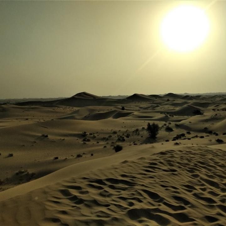 Pustynia i meczet - Abu Dhabi pozwala na chwilę się zatrzymać